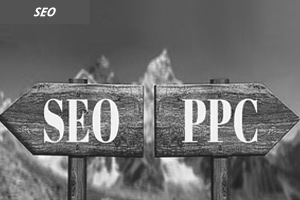 Which is Better PPC or SEO
