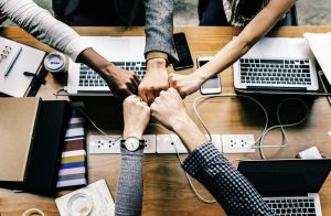A team of marketers fist bumping during a collaborative SEO meeting